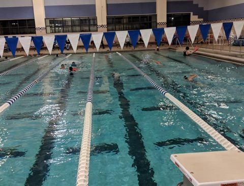 brandon aquatics aqua swim michigan four